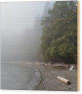 Fog At The Beach Wood Print