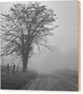 Fog Covered Lane Wood Print