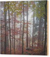 Fog In Autumn Forest Wood Print