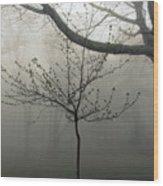 Fog In Shenandoah Wood Print