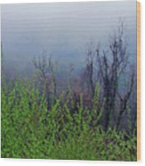Fog In The Mountains Wood Print