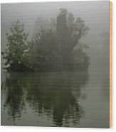 Fog In The Park- Warminster Wood Print