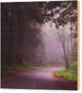 Fog In The Redwoods Wood Print