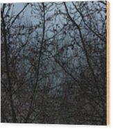Fog In The Trees Wood Print