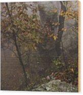 Fog On The Mountain Wood Print