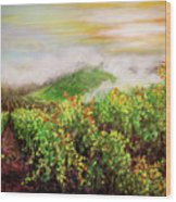 Fog On The Vines Wood Print