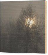 Fog Shine Wood Print