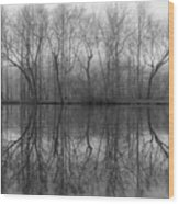 Foggy Lagoon Reflection #3 Wood Print