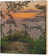 Foggy Dawn. Wood Print