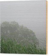 Foggy Day Wood Print