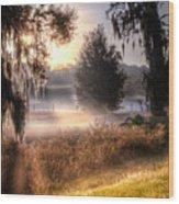 Foggy Dreamworld Wood Print