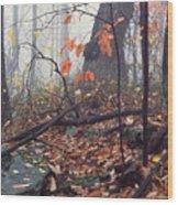 Foggy Fall Woodland Morning Wood Print