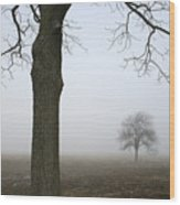 Foggy Field Wood Print