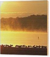 Foggy Flock Of Seagulls Sunrise 9 17 2009 019a Wood Print