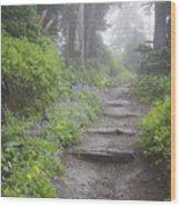 Foggy Forest Path Wood Print
