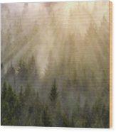 Foggy Forest Wood Print