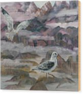 Foggy Gulls Wood Print