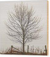 Foggy Lone Tree Hill Wood Print