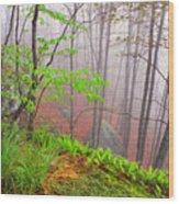 Foggy Misty Spring Morning Wood Print