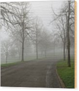 Foggy Morning At The Park Winding Path Wood Print