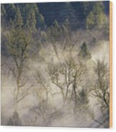 Foggy Morning In Sandy River Valley Wood Print