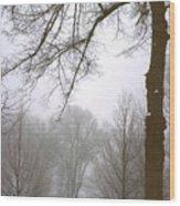 Foggy Morning Landscape 10 Wood Print