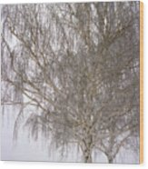 Foggy Morning Landscape 12 Wood Print