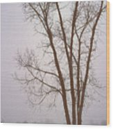 Foggy Morning Landscape 13 Wood Print