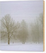 Foggy Morning Landscape 8 Wood Print