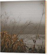 Foggy Morning Marsh Wood Print
