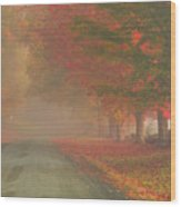 Foggy Morning On Cloudland Road Wood Print