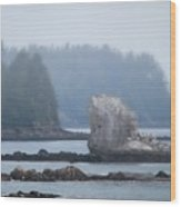 Foggy Morning On The Pacific Coast Wood Print