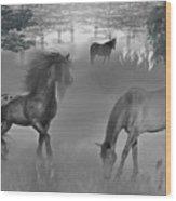 Foggy Morning Pasture Wood Print