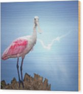 Foggy Morning Spoonbill Wood Print