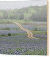 Foggy Muleshoe Bend Wood Print