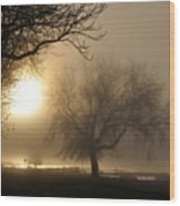 Foggy November Sunrise On The Bay Wood Print