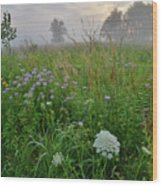 Foggy Prairie In Glacial Park In Mchenry County Wood Print