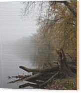 Foggy River Bank Wood Print