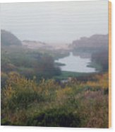 foggy springtime morning approach to Kehoe Beach Wood Print
