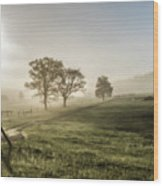 Foggy Sun Rise Wood Print