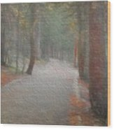Foggy Trail Near Bear Lake Wood Print