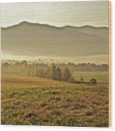 Foggy Valley Wood Print