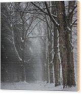 Foggy Vermont Winter Path Wood Print