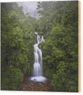 Foggy Waterfall Wood Print