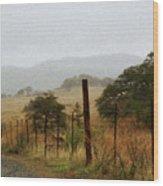 Foggy Wet Morning Wood Print