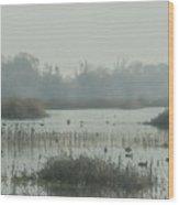 Foggy Wetlands Wood Print