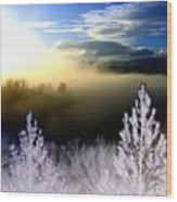Foggy Winter Sunset Wood Print