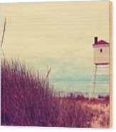 Foghorn At Big Sable Point Wood Print