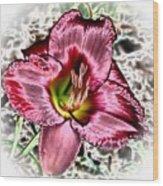 Foiled Beauty - Daylily Wood Print