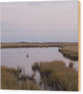 Folgers Marsh Nantucket Wood Print